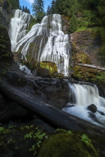 The Gifford Pinchot National Forest is a special place Washington State