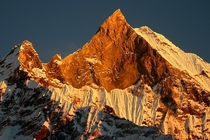The golden glow of the sun illuminating Mount Machhapuchchhre Nepal
