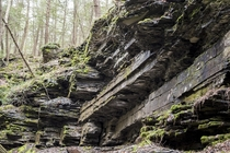 The gorges of Ithaca NY on a sunny morning hike