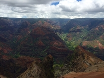 The Grand Canyon of the Pacific Kauai Hawaii