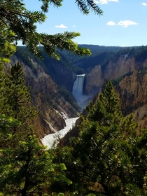 The Grand Canyon of the Yellowstone Yellowstone NP