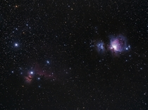 The Great Orion amp Horsehead Nebula