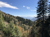 The Great Smoky Mountains November