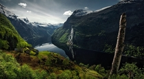 The Green Fjord by Max Rive