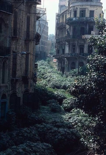The Green Line demarcation zone Beirut Lebanon