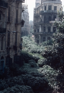 The Green Line demarcation zone Beirut Lebanon   x-post rhistoryporn