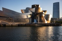 The Guggenheim Museum in Bilbao
