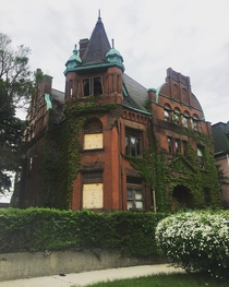 The HammerPalmer Mansion in Bronzeville Chicago Built in  and most recently owned by Lu Palmer aka the godfather of Chicago black political activism The structure has been vacant for years and is in danger of demolition by neglect