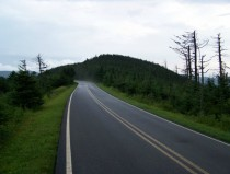 The Highest Road in the Eastern United State on top of Mt Mitchell