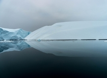 The ice can take numerous shapes sizes both vivid and muted colors and this one kind of looks like a profile of a bird over water as smooth as glass in early summer Ilulissat Greenland