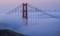 The iconic foggy sunrise envelopes San Franciscos skyline