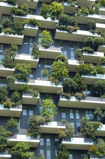 The incredible Bosco Verticale residential towers in Milan Italy