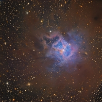 The Iris Nebula - a beautiful reflection nebula surrounded by dust