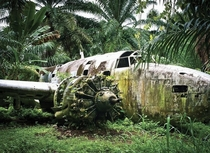 The jungle steadily reclaims a Lockheed Ventura of the New Zealand Air Force This aircraft crashed at Talasea Airfield when it suffered from engine failure in September  following a bombing mission against Japanese shipping in Rabaul Harbour New Britain