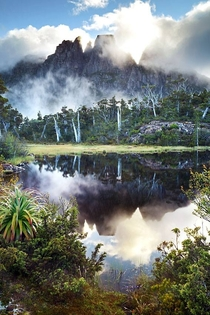The Labyrinth Tasmania by Gerard Horsman