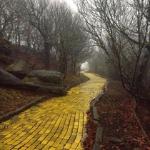 The Land of Oz Theme Park in North Carolina -  Bricks Were Used for The Yellow Brick Road Abandoned  Years Ago