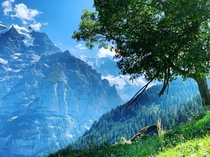 The Lauterbrunnen Valley Switzerland x
