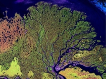The Lena Delta in Siberia  NASA image