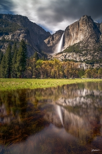 The lesser seen beauty of Yosemite - Yosemite Falls Yosemite National Park  by Jeb Buchman