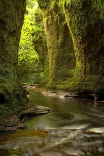 The Lovely Finnich Glen near Loch Lomond in Scotland Photo by Ann-Marie Westwood