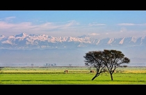 The Lower Himalayas visible from the Plains of Punjab Head Marala Sialkot Pakistan