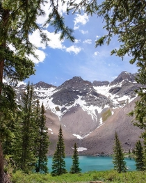 The magical beauty of the Rockies Telluride CO  chileno_hikertron