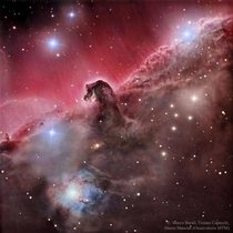 The Magnificent Horsehead Nebula
