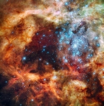 The massive young stellar grouping R