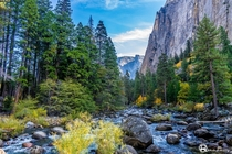 The Merced River in Yosemite National Park CA
