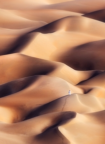 The mesmerizing beauty of the sand dunes of Rub al-Khali or Empy Quarter Desert near Liwa oasis UAE  Photo by Khalid Alhammadi
