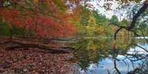 The Middlesex Fells in Boston