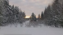 The midwinter-view from my grandmothers living room window in n Sweden