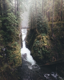 The mighty Sol Duc Falls in Olympic National Park