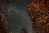 The Milky Way Galaxy spanning across autumn trees illuminated by a bonfire