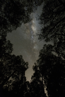 The milkyway through natures eye Canberra Australia