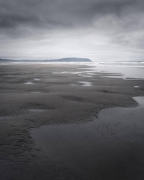 The Moody Dark World of Ecola State Park Oregon Coast  x