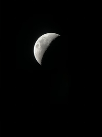 The moon from my backyard