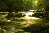 The morning sun spilling into Forney Creek Great Smoky Mountains Natl Park North Carolina USA