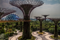 The most futuristic place I have ever visited Singapores Gardens by the Bay