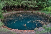 The Mysterious Abandoned Torwood Blue Pool The Purpose and Builders of Which Have Never Been Discovered x OC