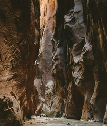 The Narrows a spectacular  mile return hike up the Virgin River in Zion National Park Utah
