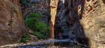The narrows in Zion national park Utah