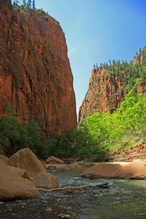 The Narrows Zion Canyon