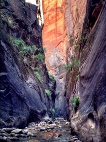 The Narrows Zion Canyon UT