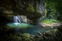 The Natural Bridge - a naturally formed rock arch over Cave Creek Formed when a waterfall undercut a cave below it and dug a pothole on top until the two joined and the creek flowed through the cave leaving an arch across the front - Queensland Australia