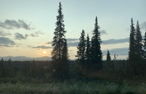 The nighttime sun in Palmer Alaska