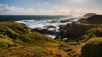 The Nobbies Phillip Island Victoria Australia -