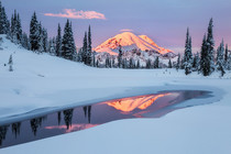 The Noblest Mountain Mount Rainier