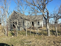 The Old Family Homestead -Spanish Fort Texas x