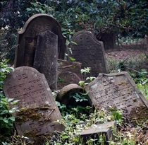 The old Jewish cemetery East Virginia